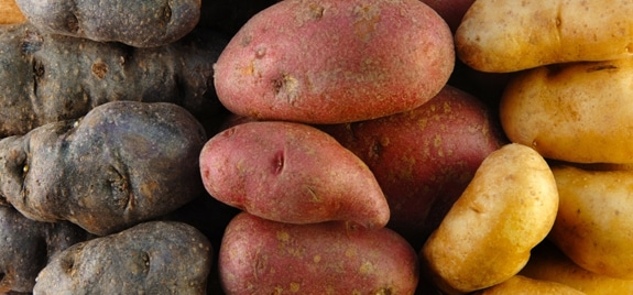Yes, potatoes CAN be a part of a healthy diet.~learn about the health benefits of eating potatoes and why they should be a part of your diet.