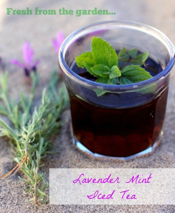 Fresh from the garden...Lavender Mint Iced Tea