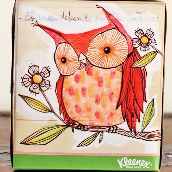 kleenex box owl