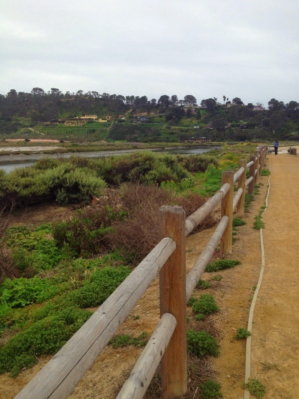 Coast to Crest Trail, Del Mar, CA//The Spicy RD