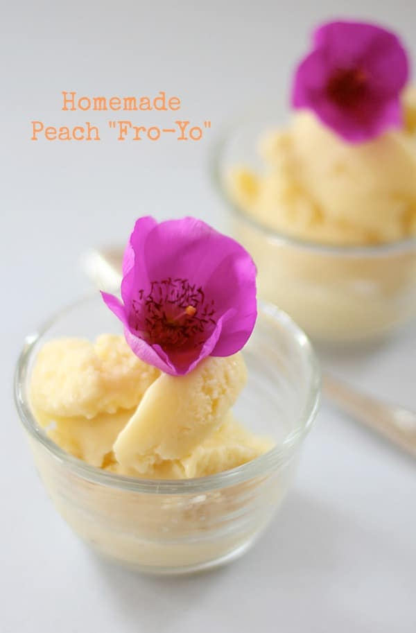 Homemade Peach Fro-Yo//The Spicy RD