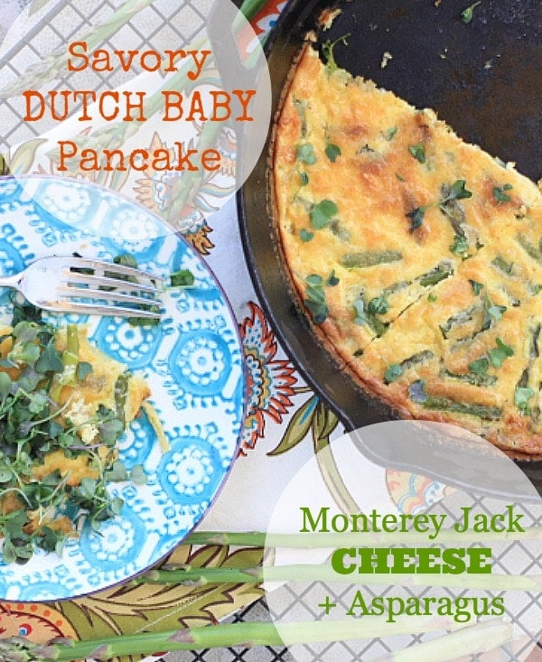 Savory Dutch Baby Pancake with Monterey Jack Cheese, Asparagus, and Microgreens // The Spicy RD