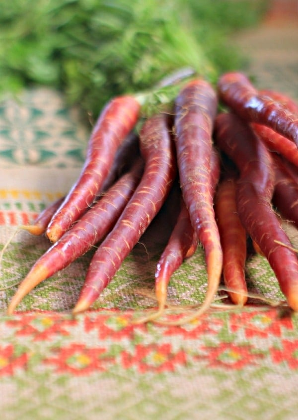Petite Red Orange Carrots