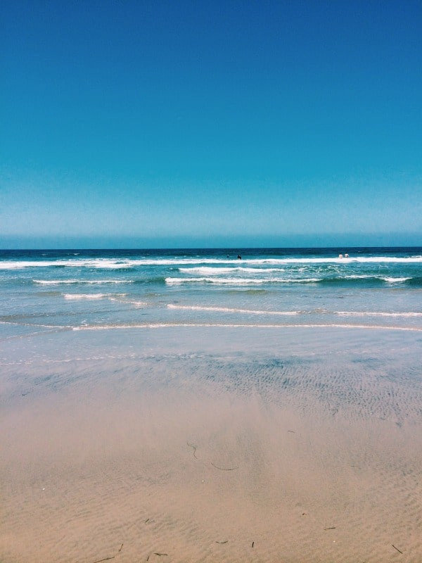 A perfect day at Dog Beach in Del Mar // EA Stewart