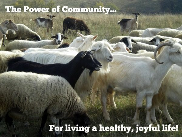 The Power of Community to Live a Healthy, Joyful Life.
