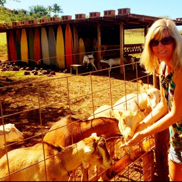 Having fun at the Surfing Goat Diary in Maui, Hawaii.