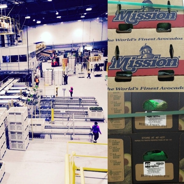 Mission Produce avocado packing plant in Oxnard California.