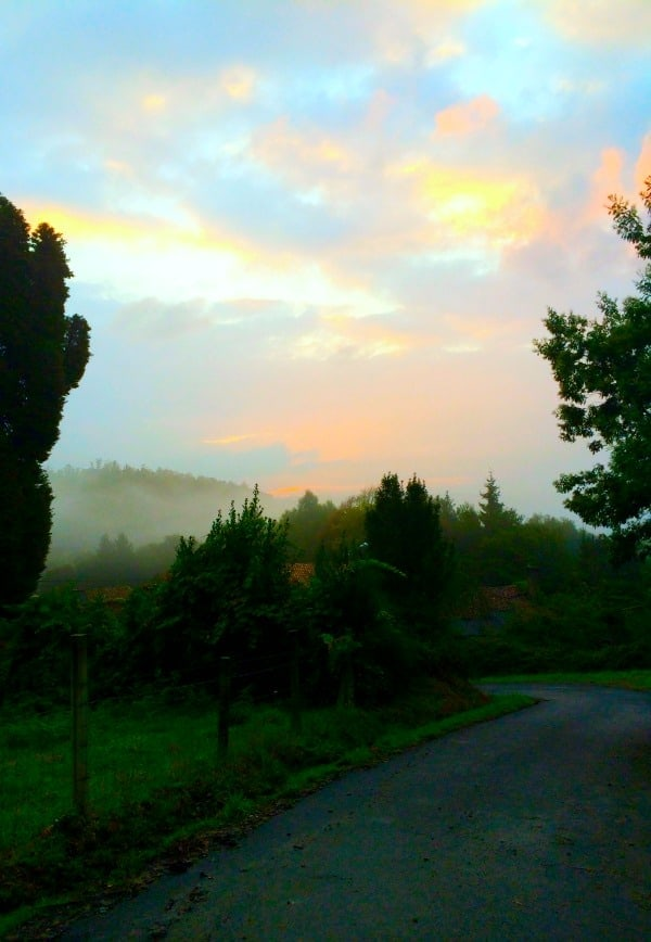 Sunrise on the Camino Frances - O'Pedrouzo to Santiago de Compostela || The Spicy RD