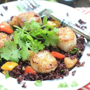 Tantalize your tastebuds w/ these Seared Scallops w/ Coconut Rice. Low FODMAP, healthy, gluten free, and delicious!   Recipe from The Calm Belly Kitchen Cookbook by Julie O'Hara @thespicyrd