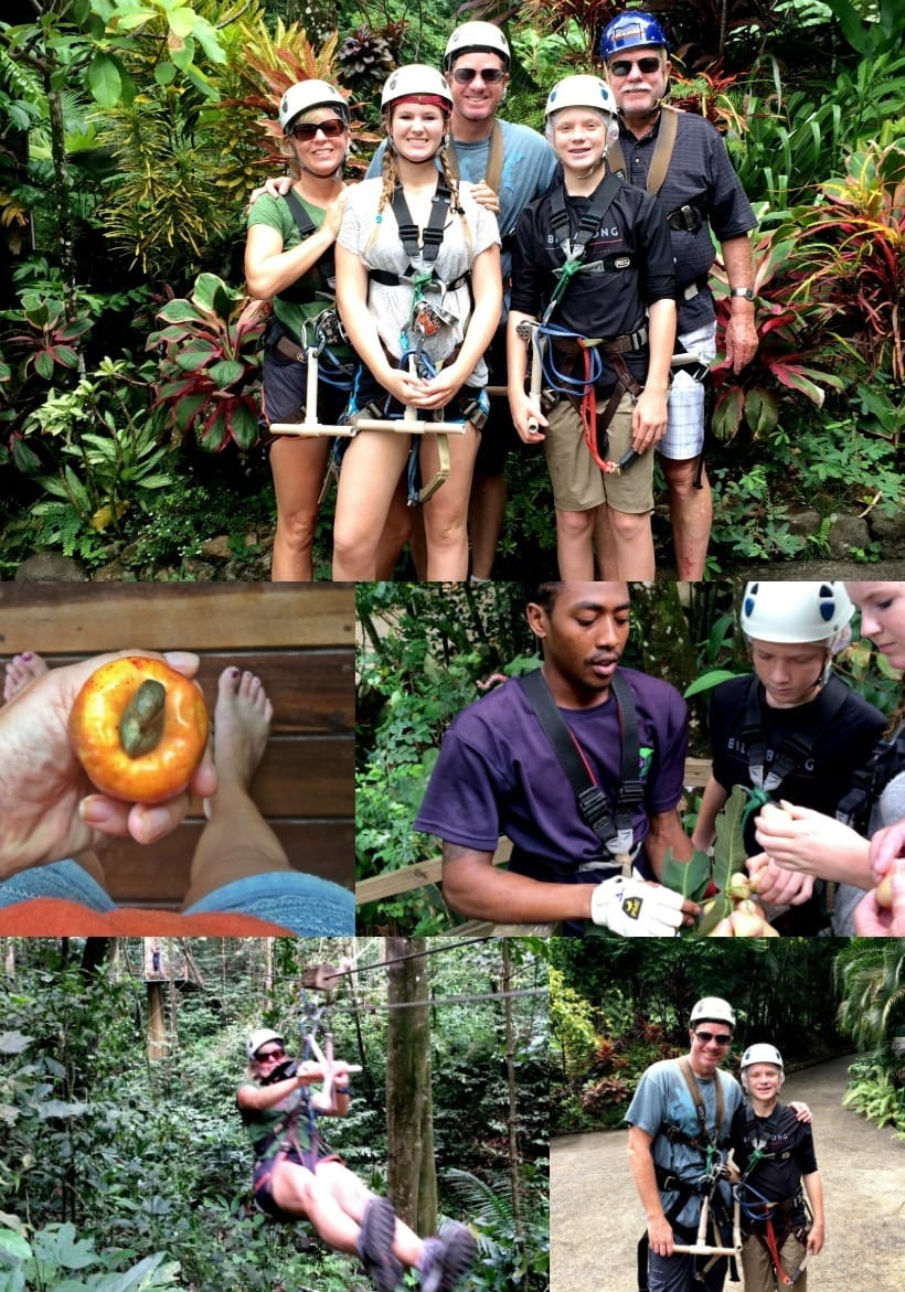 Fun for the whole family! Rainforest Adventures Zip Lining and Ariel Tram in the St Lucia