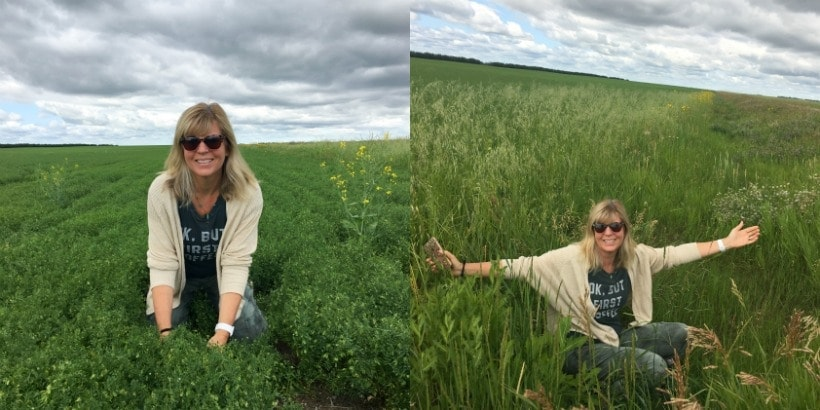 Wanna' know how much I love lentils? I love 'em so much, I fell into a ditch trying to pick them! #SponsoredTravel