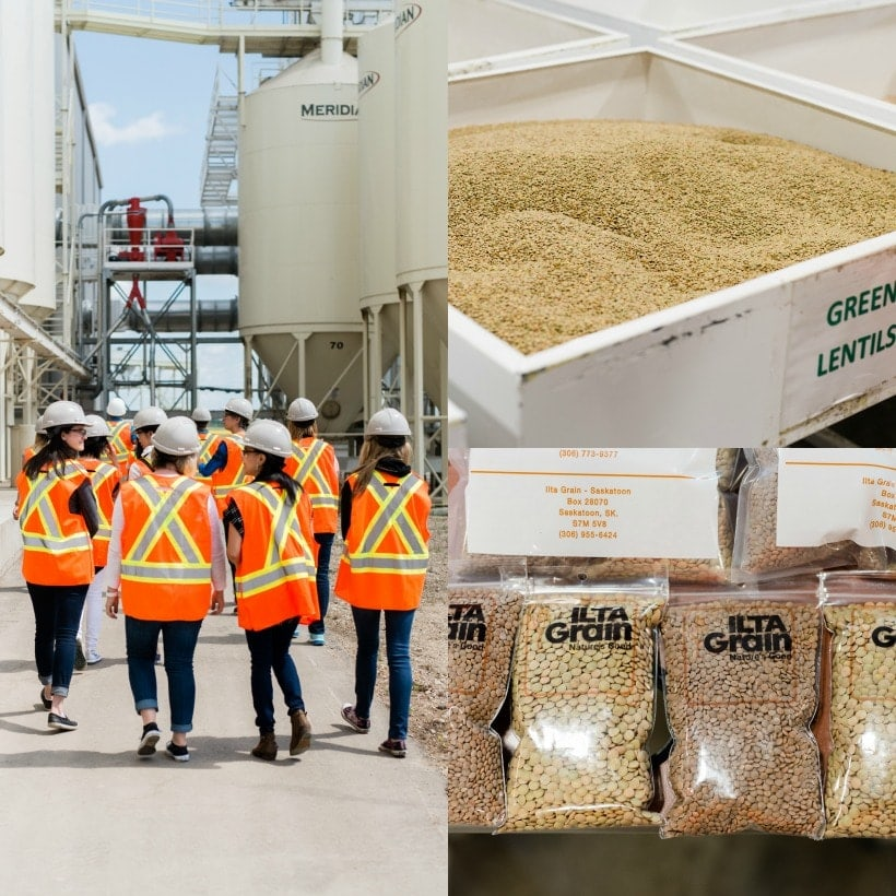 Ilta Grain Lentil Processing Plant in Canada #SponsoredTravel