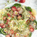 Superfood Salad Bowl