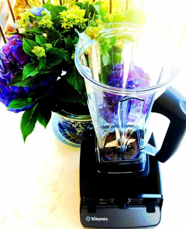 vitamix blender with flowers in the background