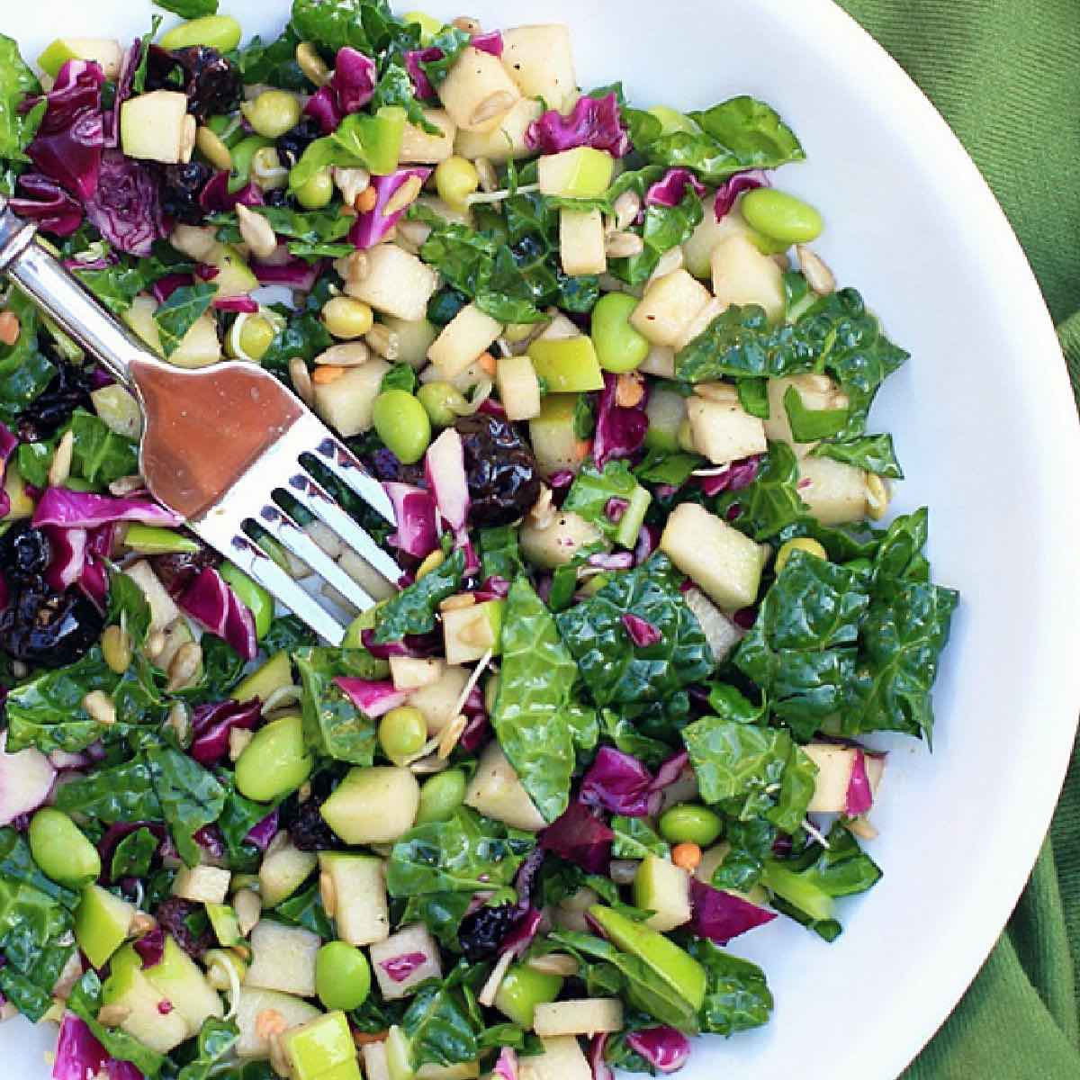 Foods for a breast cancer diet. White bowl with salad featuring kale, apples, edamame, red cabbage, and sunflower seeds.