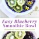Graphic with blueberry smoothie bowl topped with kiwi fruit, hemp seeds, and viola flowers.